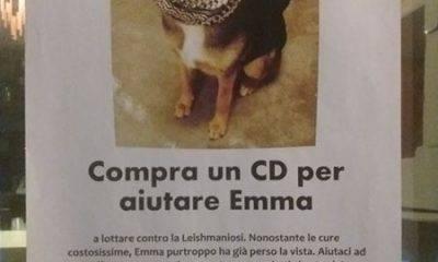 Un CD per aiutare Emma a lottare contro la Leishmaniosi