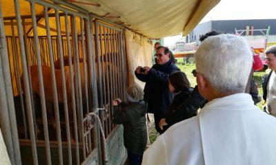 Benedizione animali e artisti del Circo Lidia Togni a Castelvetrano