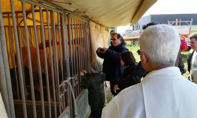 Benedizione animali e artisti del Circo Lidia Togni a Castelvetrano 4