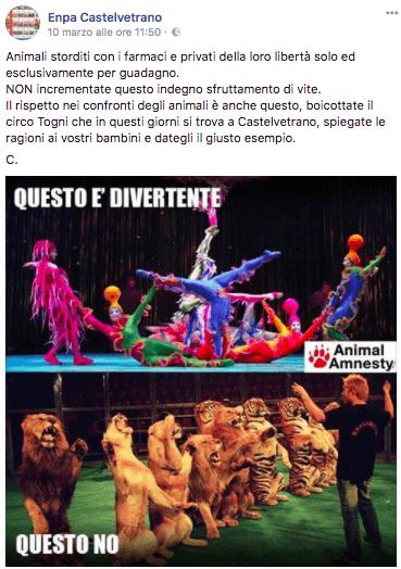 """ENPA Castelvetrano: """"Boicottare ilcircocon animali"""" 1"""