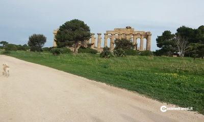 La storia di Selinunte raccontata attraverso un Musical ai piedi dei templi del Parco Archeologico 1