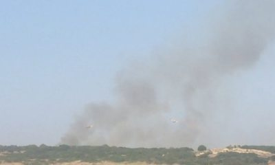 """Incendio a Selinunte, Codiciambiente: """"Un danno enorme al paesaggio"""" 1"""