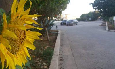 Decoro urbano, Volontari CRI in azione per pulire Marinella di Selinunte