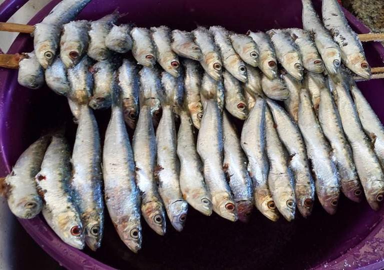 "Sardina di Selinunte Slow Food ""Castelvetrano e Agro Selinuntino"" 1"