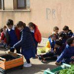 """Avviate con successo le attività del progetto ERASMUS all'I.C. """"Lombardo Radice – Pappalardo"""" 5"""